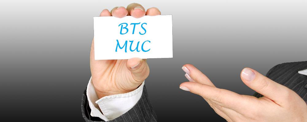 Pourquoi choisir le BTS MUC en Alternance